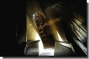 vatican_basilique_escalier