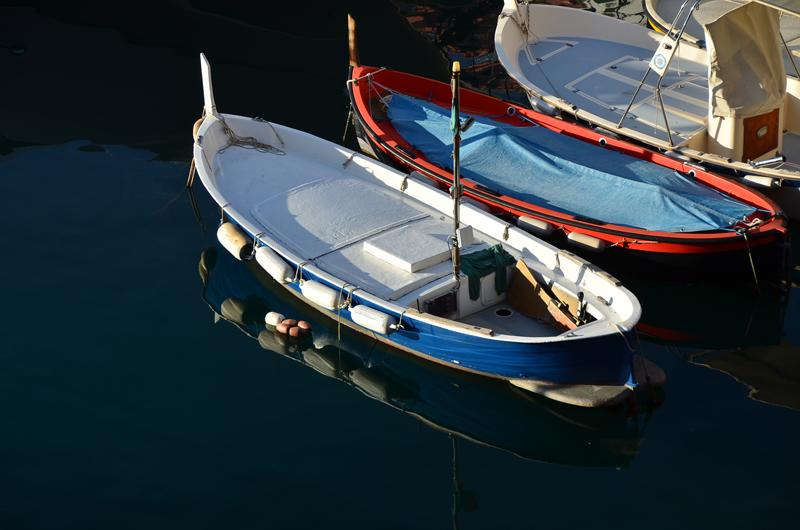 Bateaux de pêche à Camogli