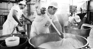 Mozzarrella : l'Or blanc de Campanie