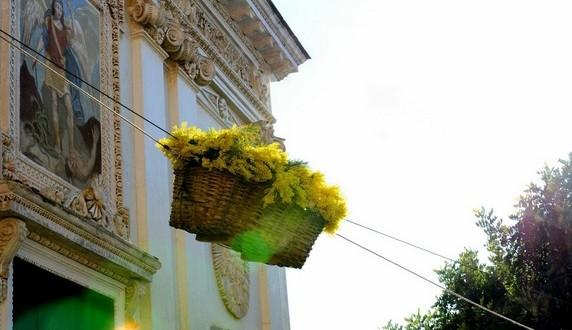 La Fête du Mimosa de Pieve Ligure