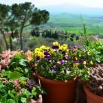 Toscane – Un parcours au sud de Sienne en 6 étapes